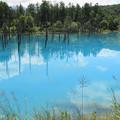 Photos: IMG_2114a青い池
