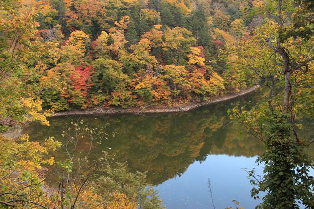 半月湖の秋IMG_4142a