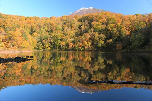 Photos: 半月湖の秋IMG_4212a