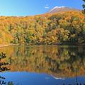 半月湖の秋IMG_4217a