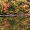 半月湖の秋IMG_4114a
