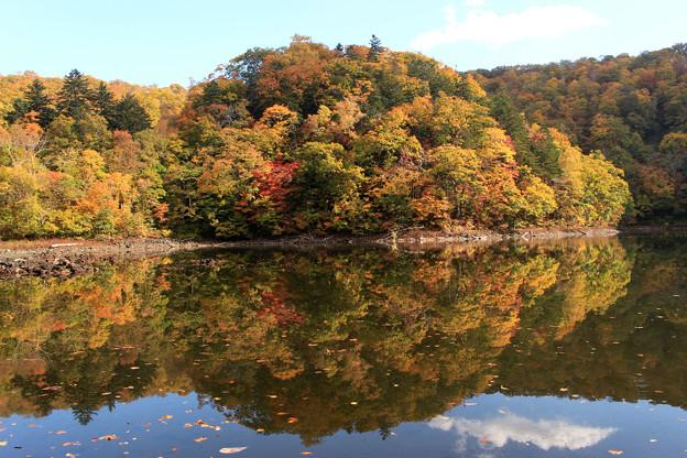 半月湖の秋IMG_4126a