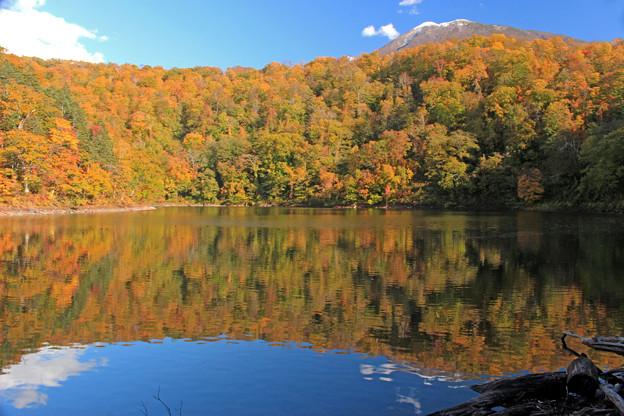 半月湖の秋IMG_4222a