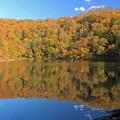 Photos: 半月湖の秋IMG_4222a