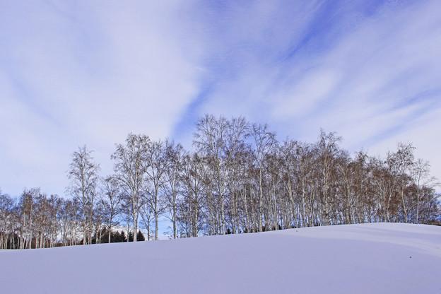冬の青空IMG_5201a