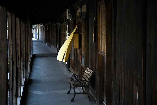 Photos: 癒しのベンチ
