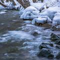 Photos: 冬の湖岸