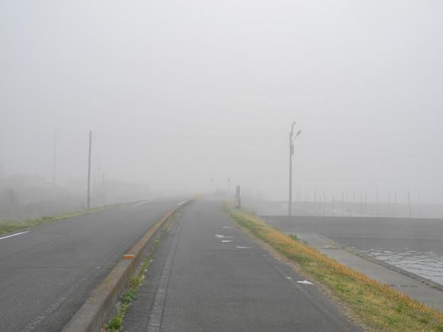 2018.03.28 霧の状態