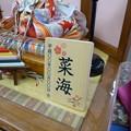 Photos: 雛用名前木札D