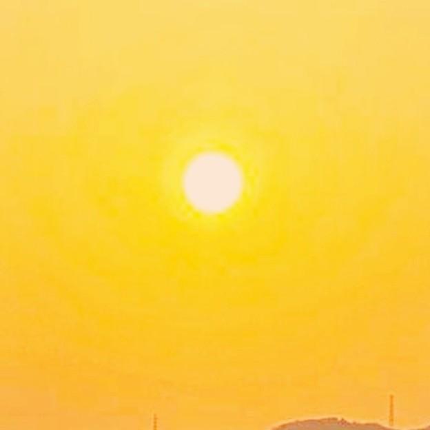 Photos: 蔵出しオレンジ
