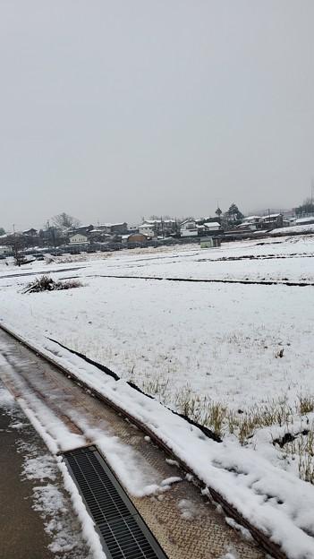 Photos: スーパーの前の冬景色