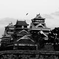 Photos: 熊本城 2