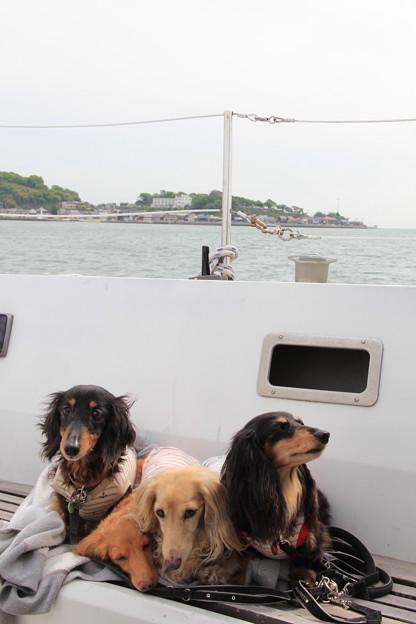 ヨットの乗り心地はどう?