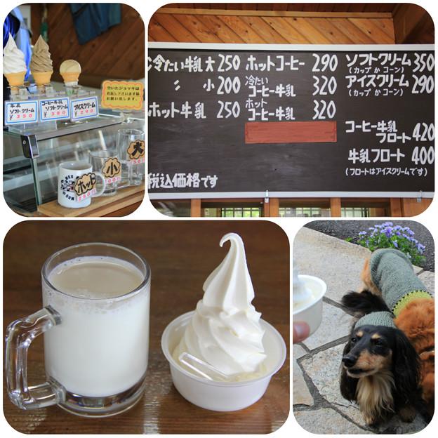 冷たい牛乳(小)&牛乳ソフトクリーム