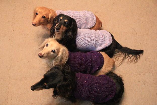 ママの手編み似合ってるでしょ