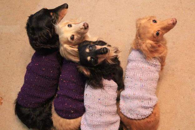 ママに編んでもらったよ