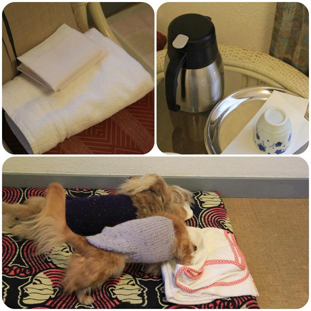 2泊目のトイレシートとバスタオルとお茶