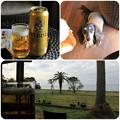写真: 海を眺めながらビール