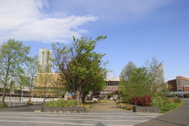 新港中央広場へ
