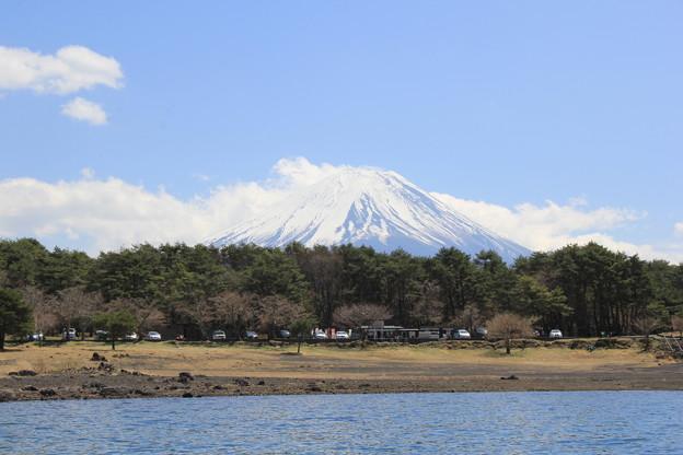 富士山を眺めながらカヤック