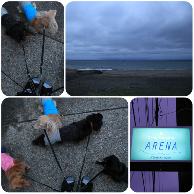 夕食前に海までお散歩