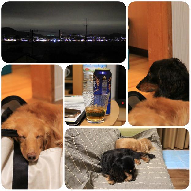 夜景を眺めながらビール