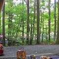 写真: 林間サイト