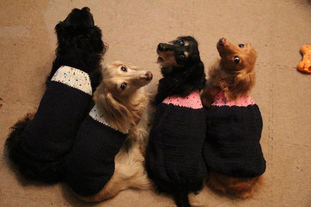 写真: ママの手編みだよ