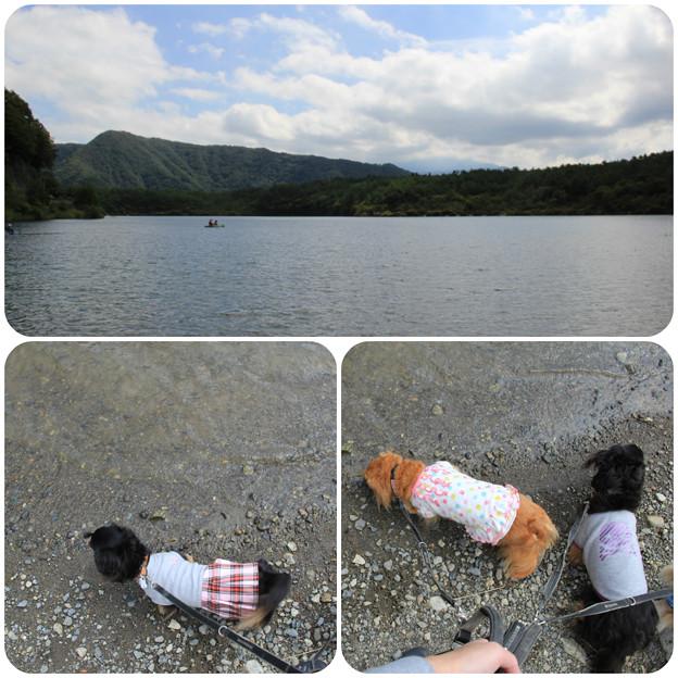 湖畔をお散歩