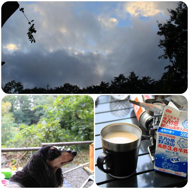 Photos: コーヒー飲みながらのんびり