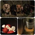 Photos: 白ワインを飲みながら
