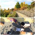 Photos: お散歩2