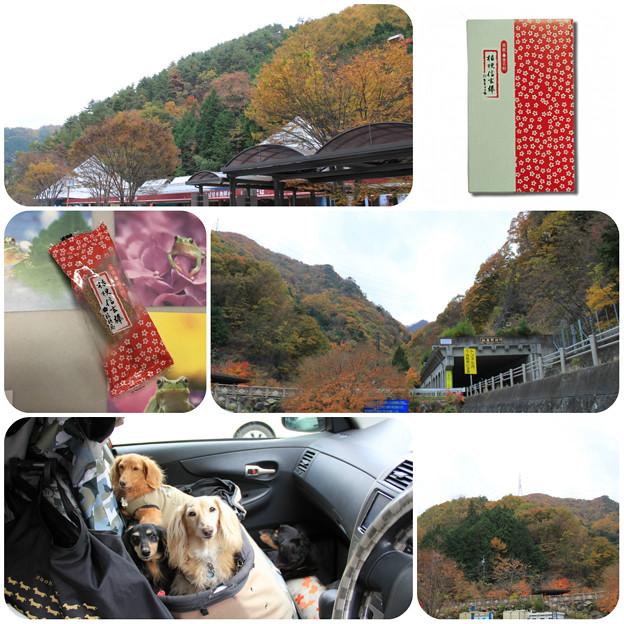 Photos: 道の駅甲斐大和