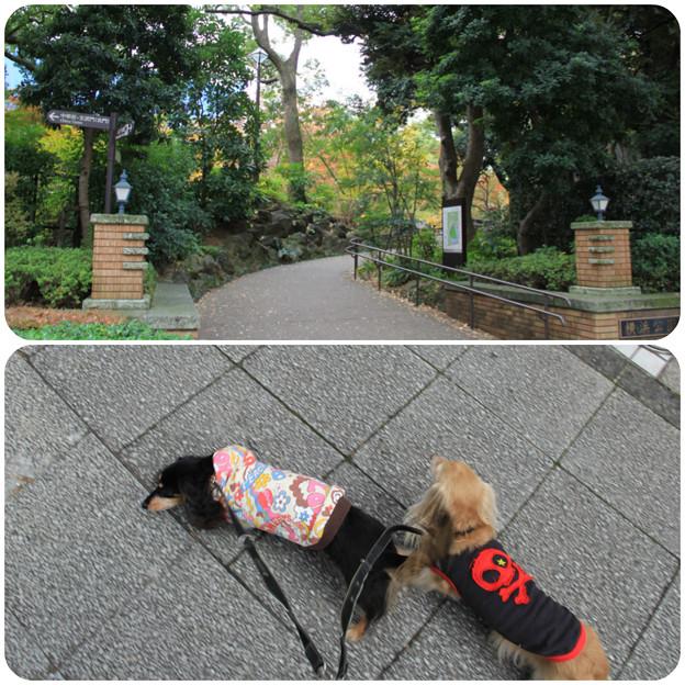 横浜公園へ