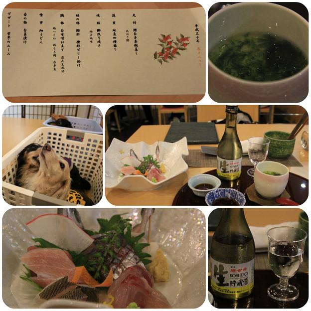 先付_造里_日本酒(腰古井)