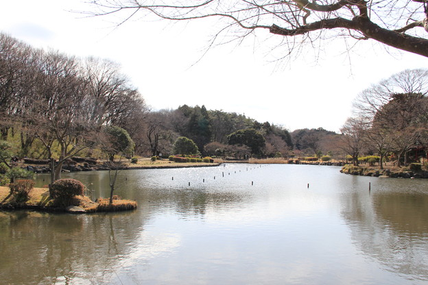 こども自然公園