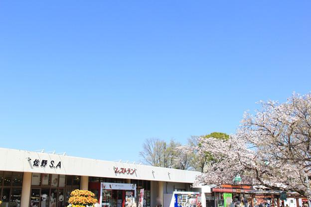 Photos: 佐野SA