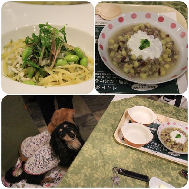 パスタ&牛肉と薩摩芋のミルク煮