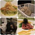 Photos: 魚料理_肉料理