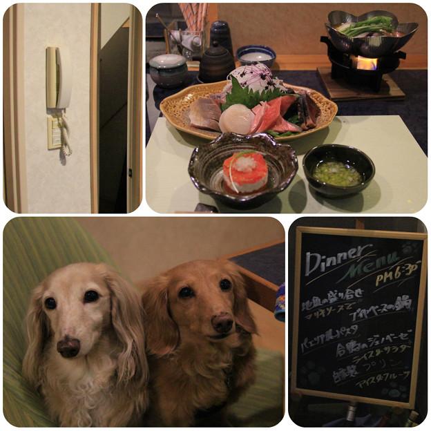 Photos: お夕食の時間