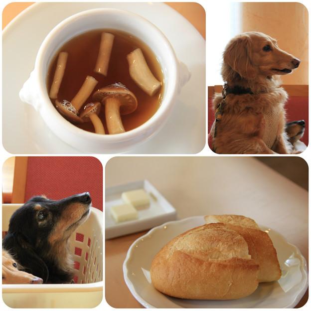 三浦野菜のスープ_パン