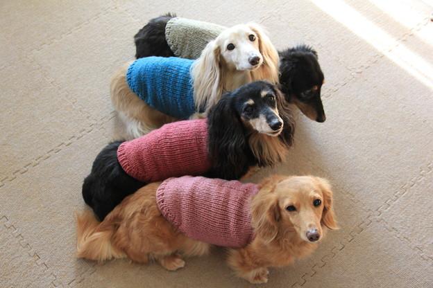 ママの手編みのニットだよ