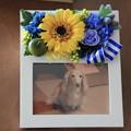 写真入りのお花のフォトフレーム