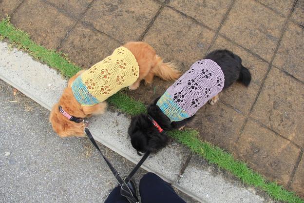 手編みのニットで