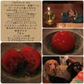 Photos: フルーツトマトのマリネ 春菊ソース