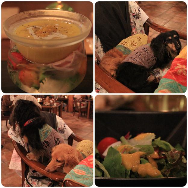 とうもろこしの冷たいスープ_野菜サラダ