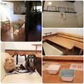 Photos: 奥の半個室