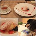 Photos: デザート_紅茶
