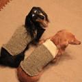 手編み似合ってるよ