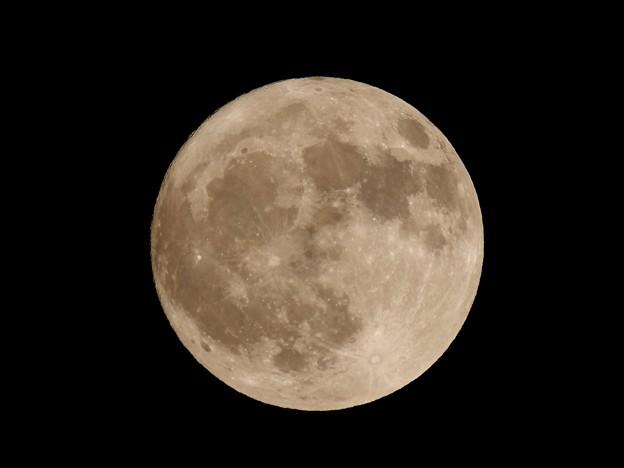 Photos: Moonlight Dance